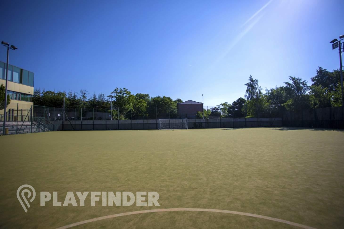 Elmgreen School 5 a side | Astroturf football pitch