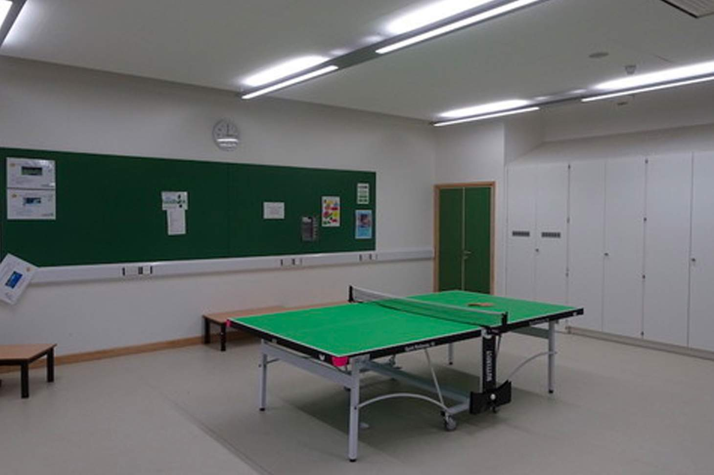 Orchardside School Table | Indoor table tennis table