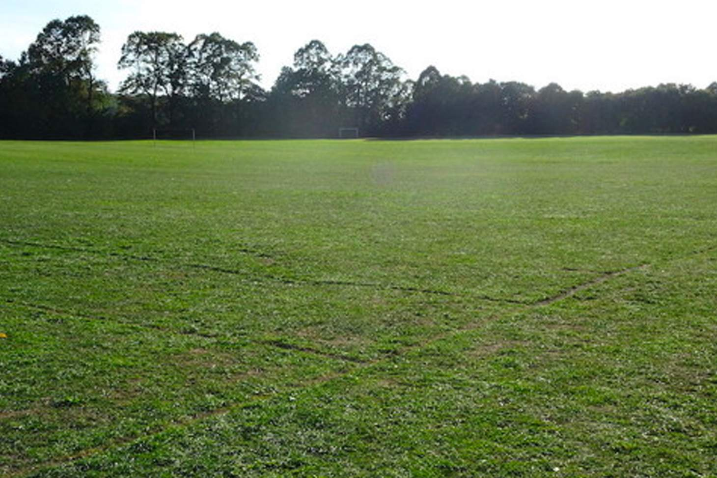 Wilmington Grammar School for Boys 11 a side   Grass football pitch