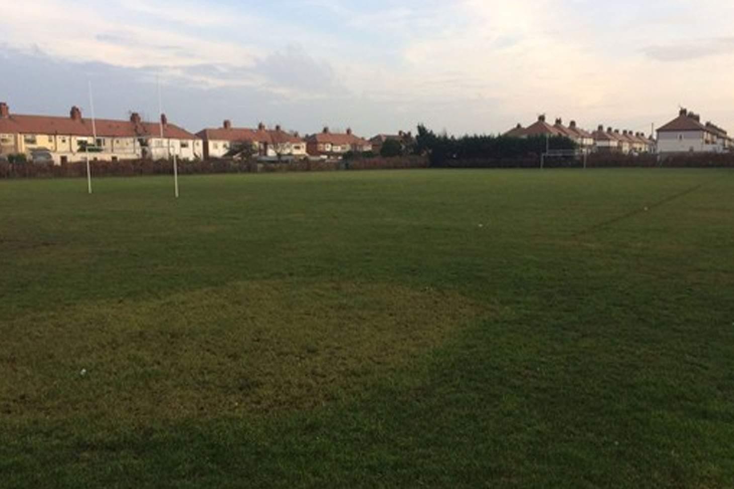 Highfield Leadership Academy 11 a side | Grass football pitch