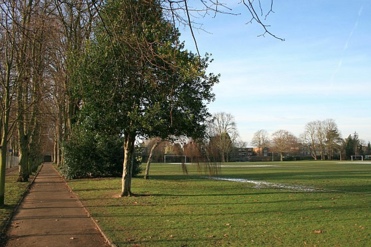 Alexandra Recreation Ground 11 a side | Grass football pitch