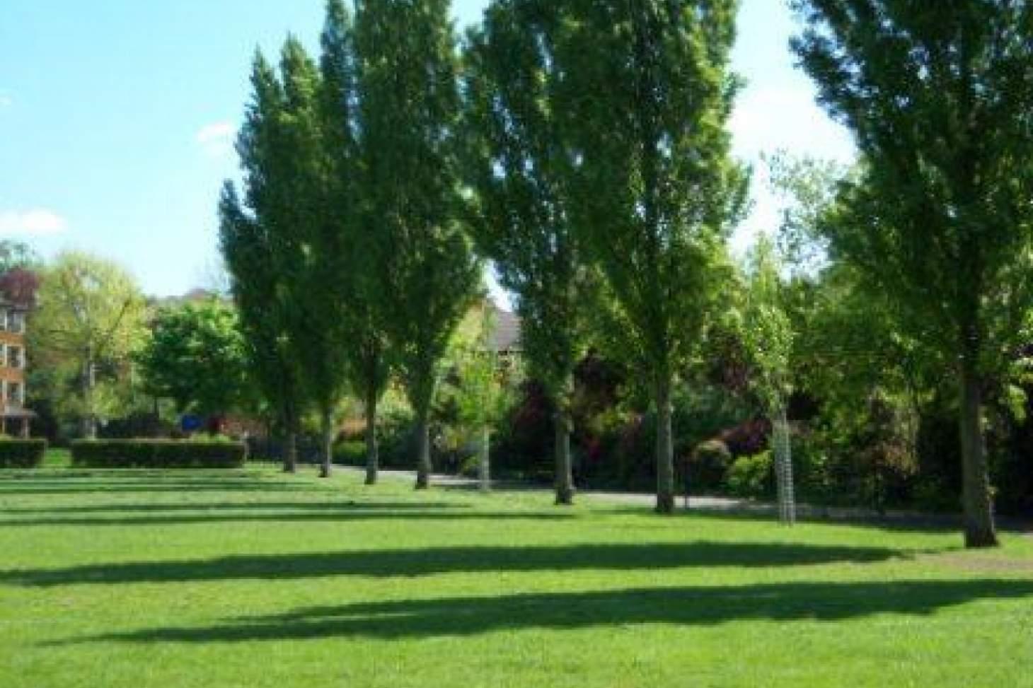 Kensington Memorial Park Outdoor | Hard (macadam) tennis court