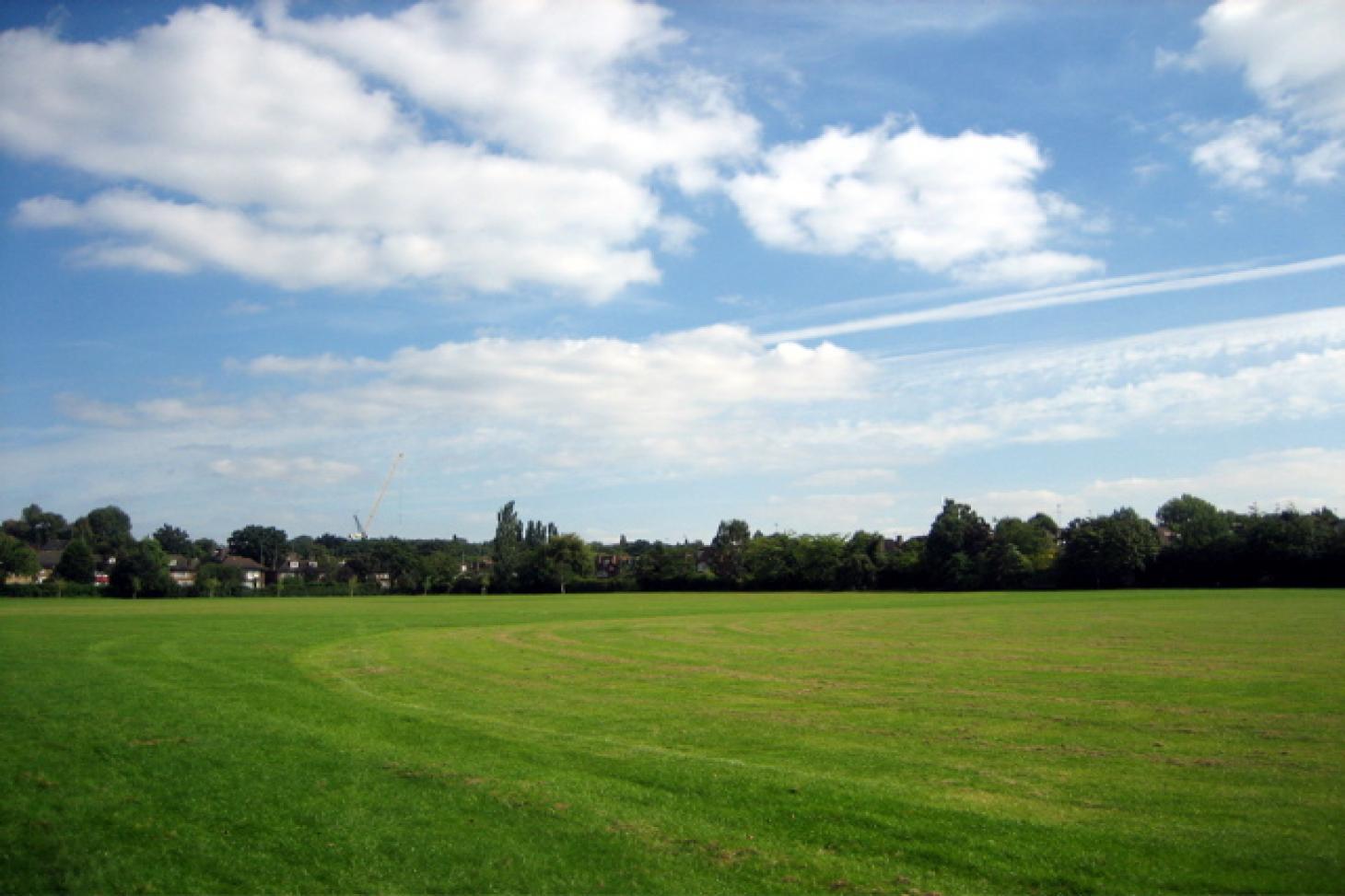 Lyttelton Playing Fields Full size   Grass cricket facilities