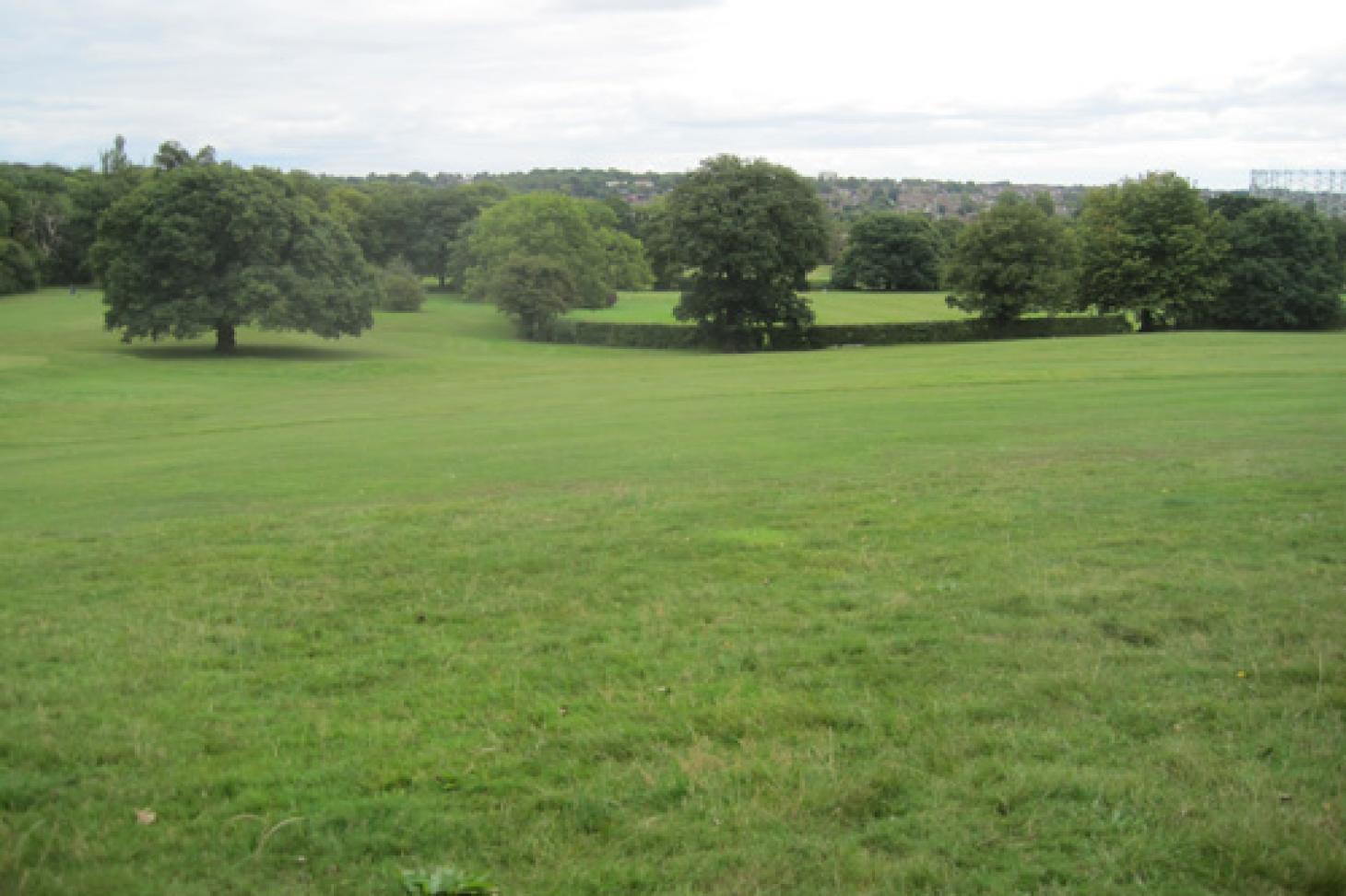 Tudor Sports Ground Full size | Grass cricket facilities