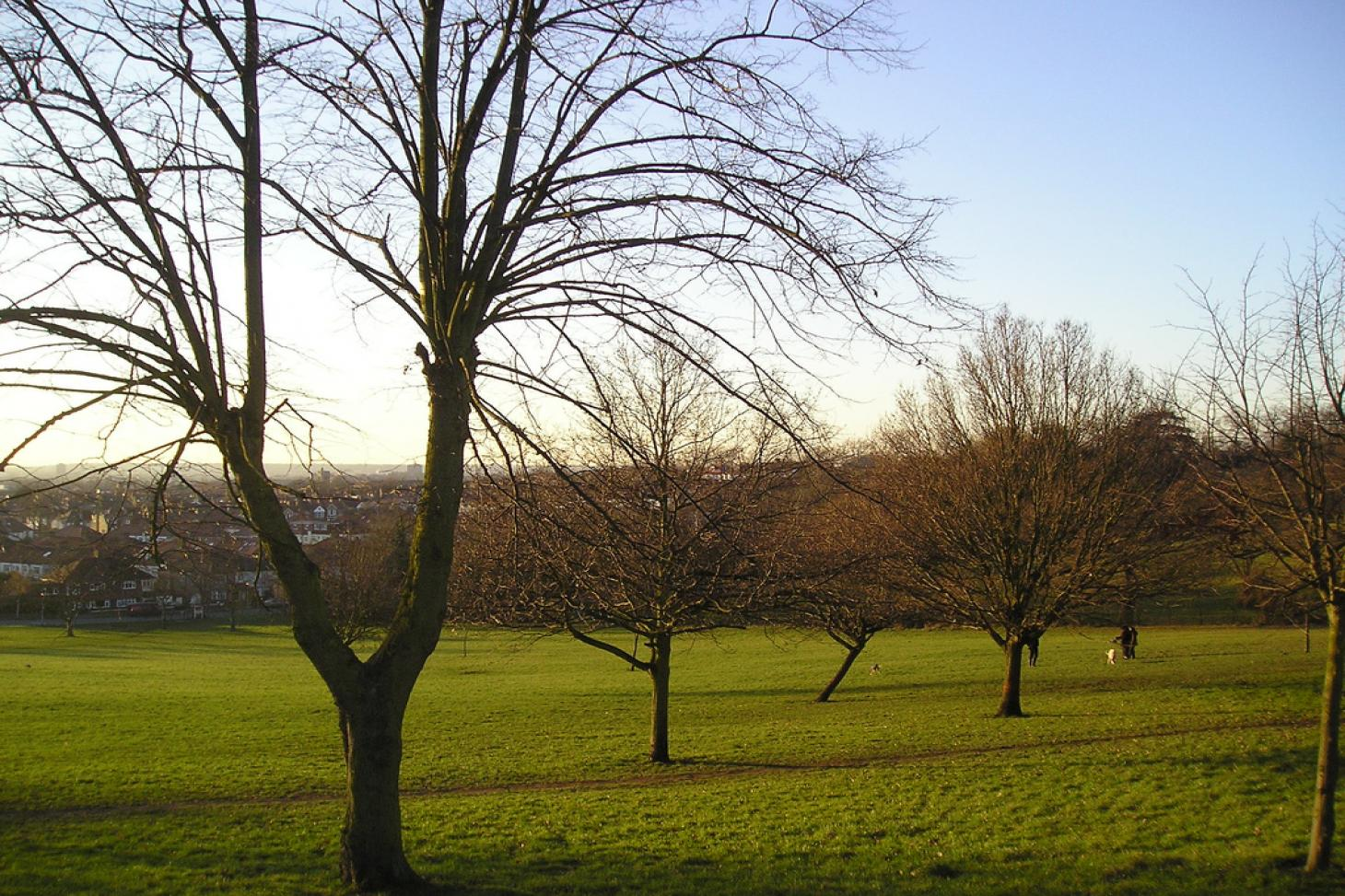 Norwood Grove Recreation Ground Outdoor | Hard (macadam) tennis court