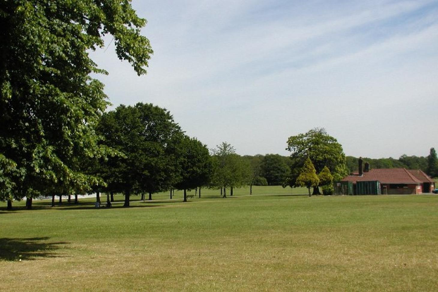 Eltham Park 11 a side | Grass football pitch
