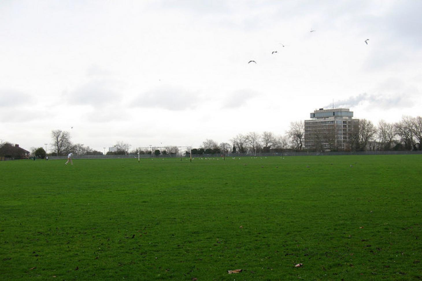 Hornfair Park 11 a side | Grass football pitch