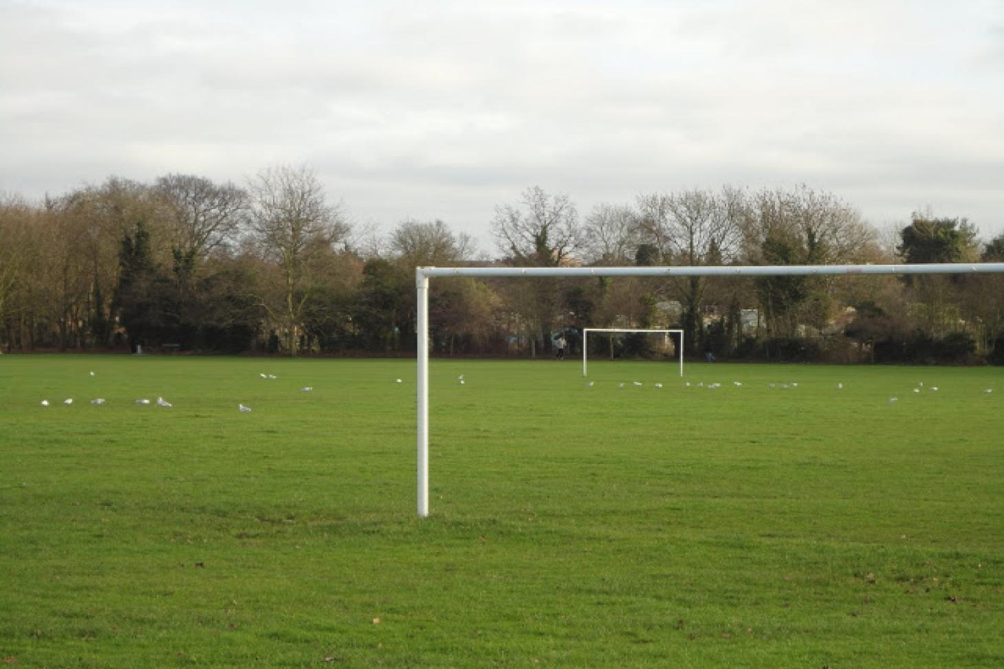 Headstone Manor Recreation Ground 5 a side   Grass football pitch