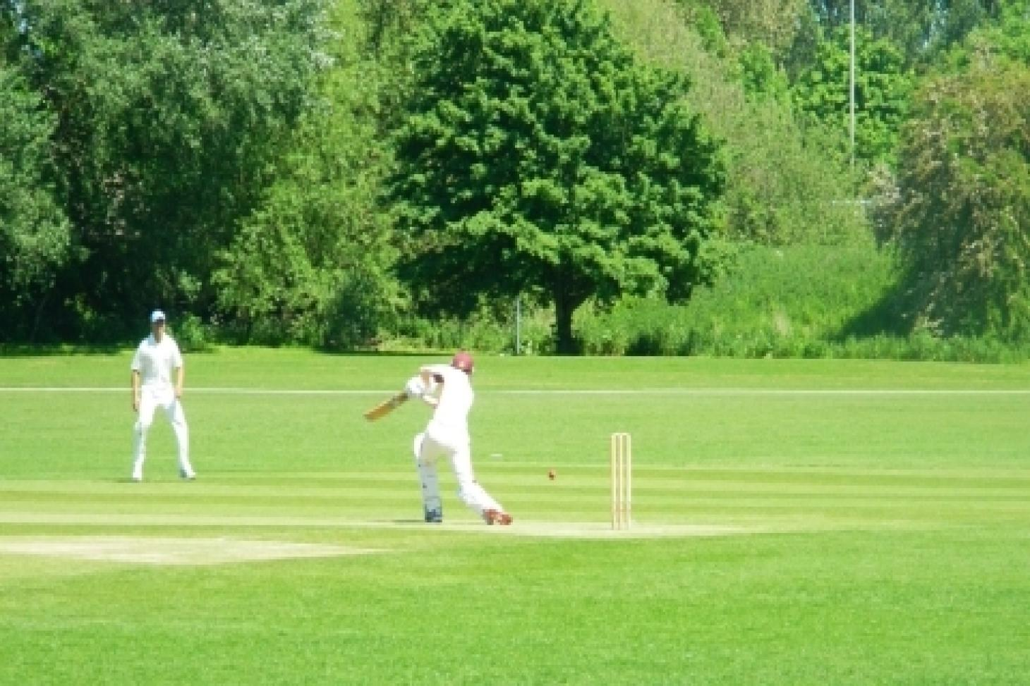 Catford Wanderers Sports Club Nets | Artificial cricket facilities