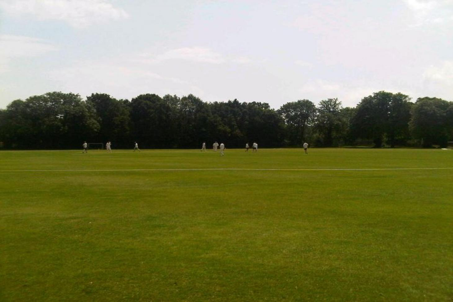 Dulwich Sports Ground Nets   Artificial cricket facilities