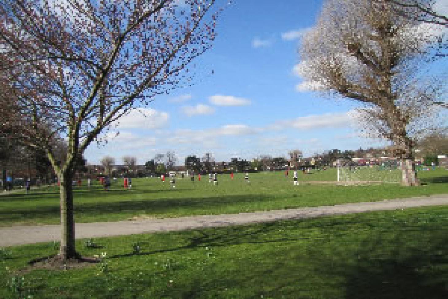 Dundonald Recreation Ground Full size   Grass cricket facilities
