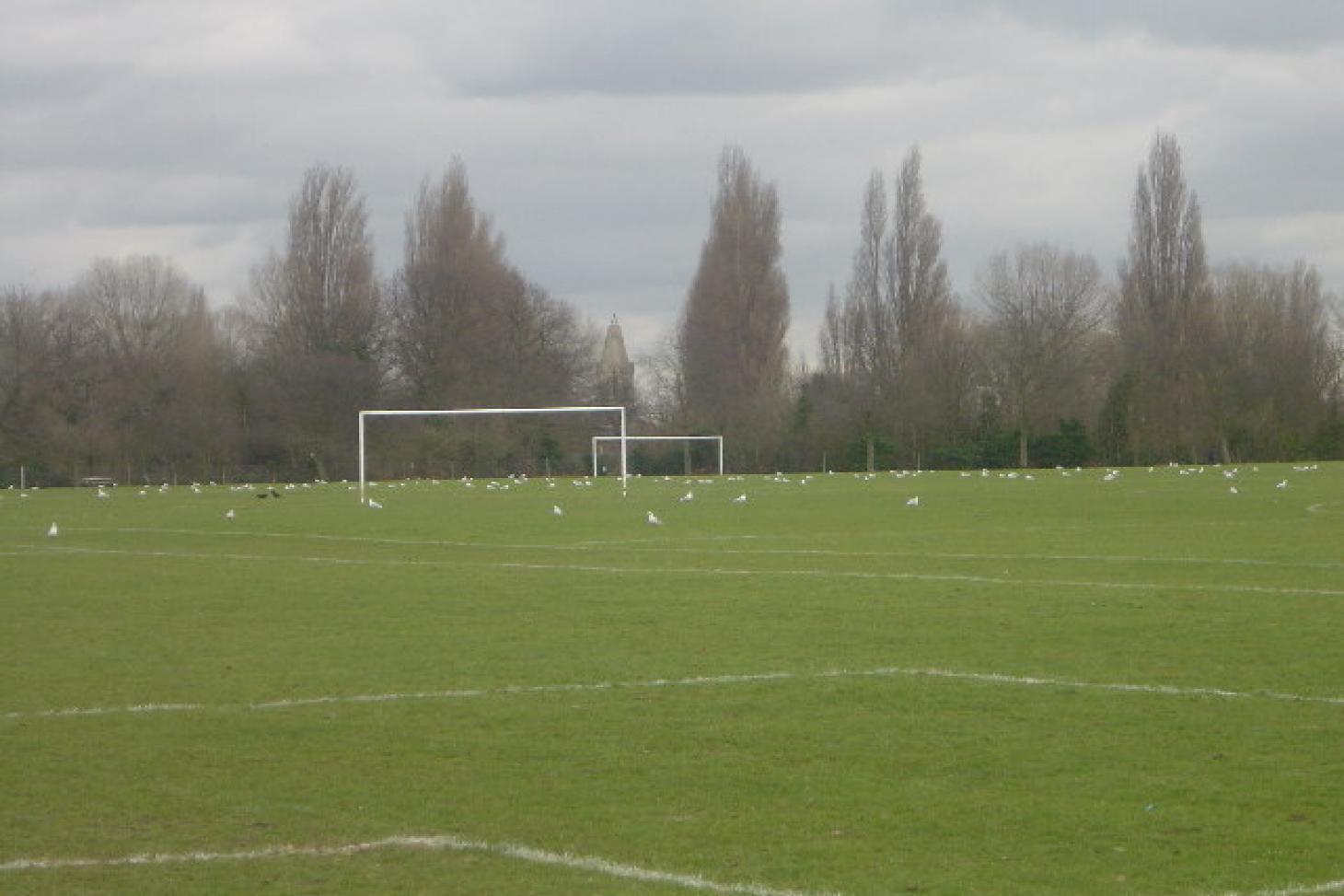 Sir Joseph Hood Memorial Playing Fields 11 a side | Grass football pitch