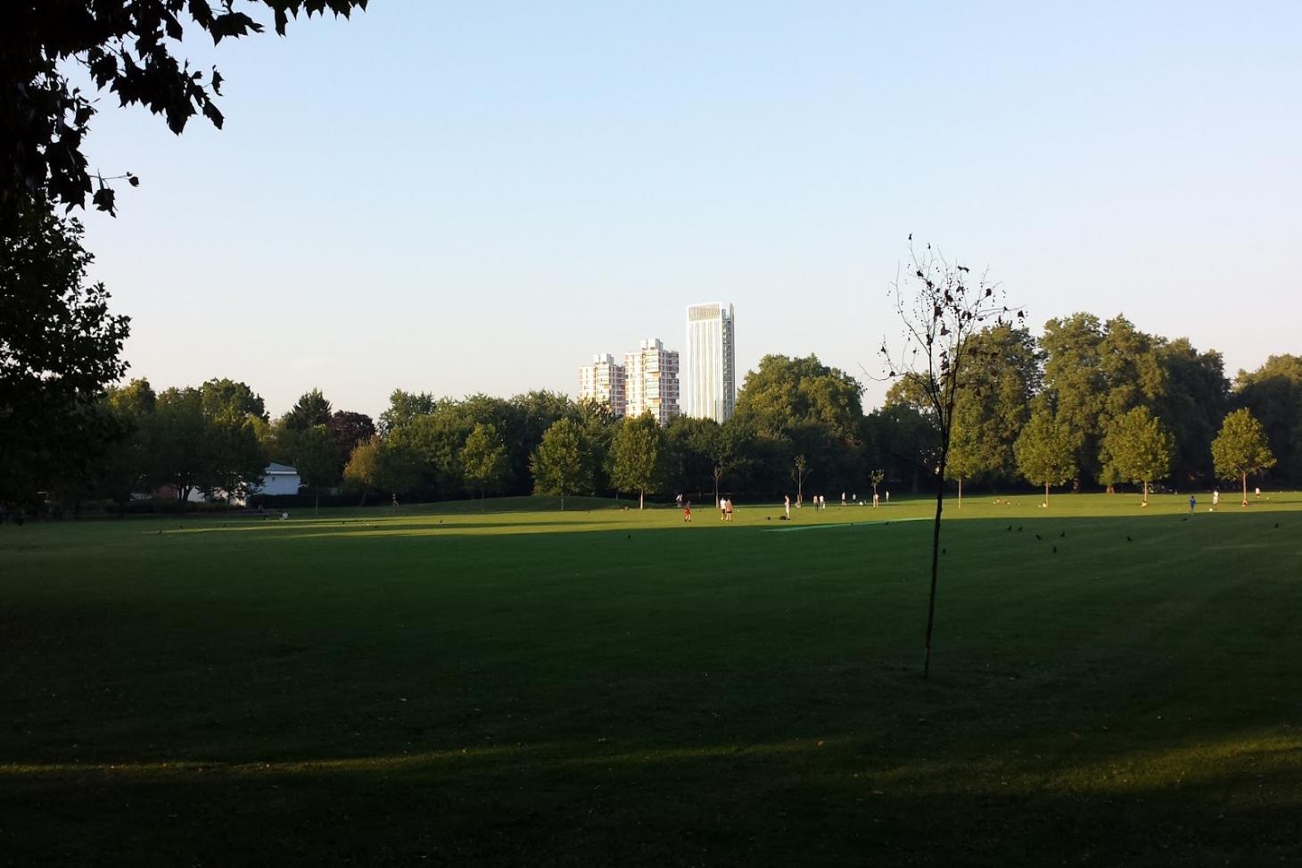 Southwark Park 11 a side   Grass football pitch