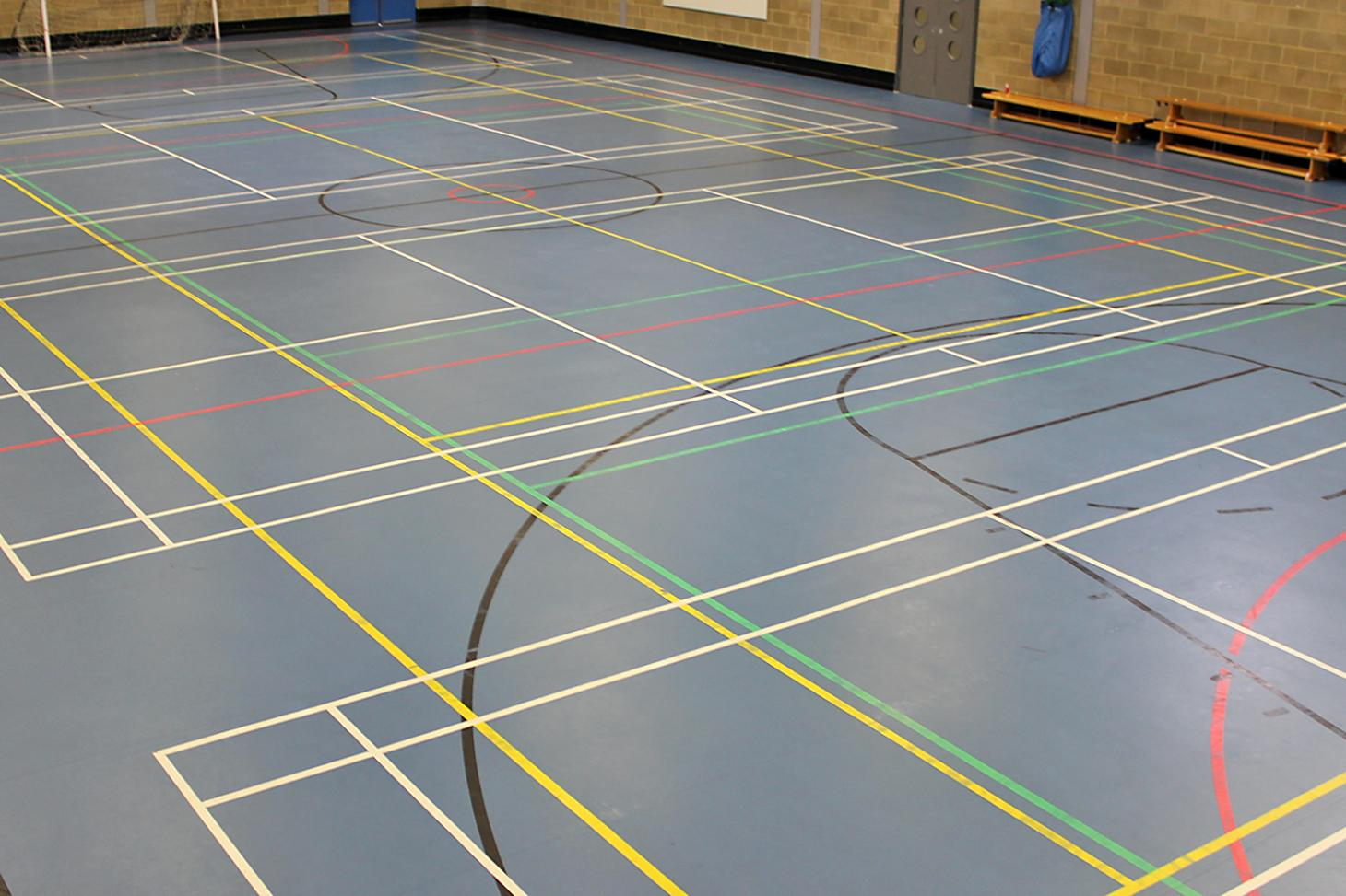 Harris Academy Purley Indoor netball court