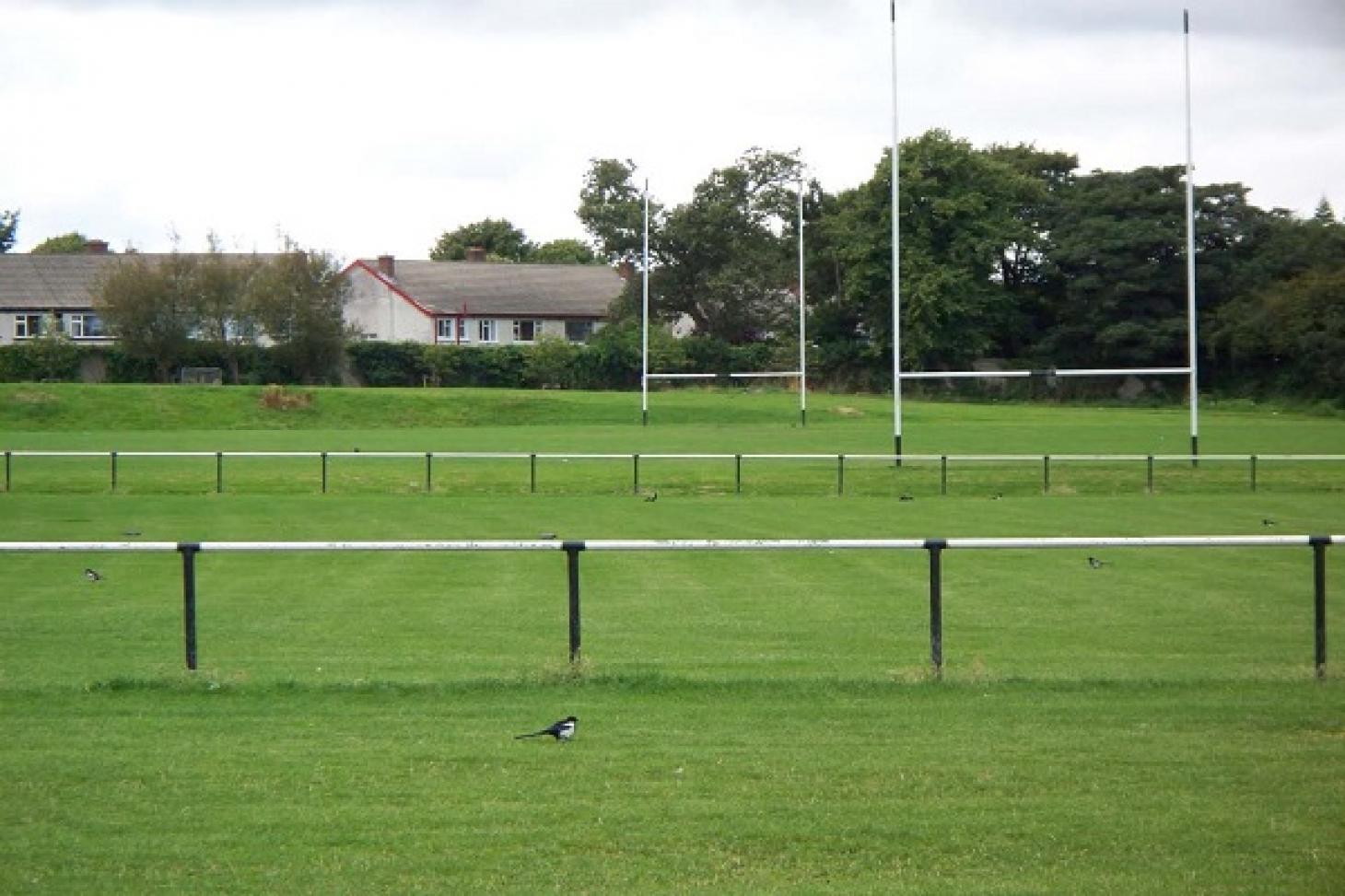 Hyde Park 11 a side | Grass football pitch
