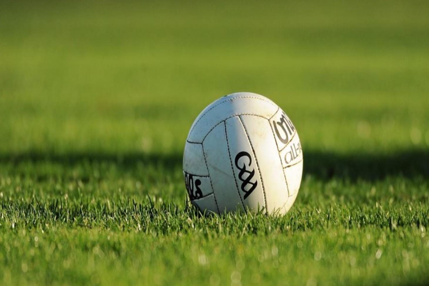 Raheny GAA Club Full size | Grass gaa pitch
