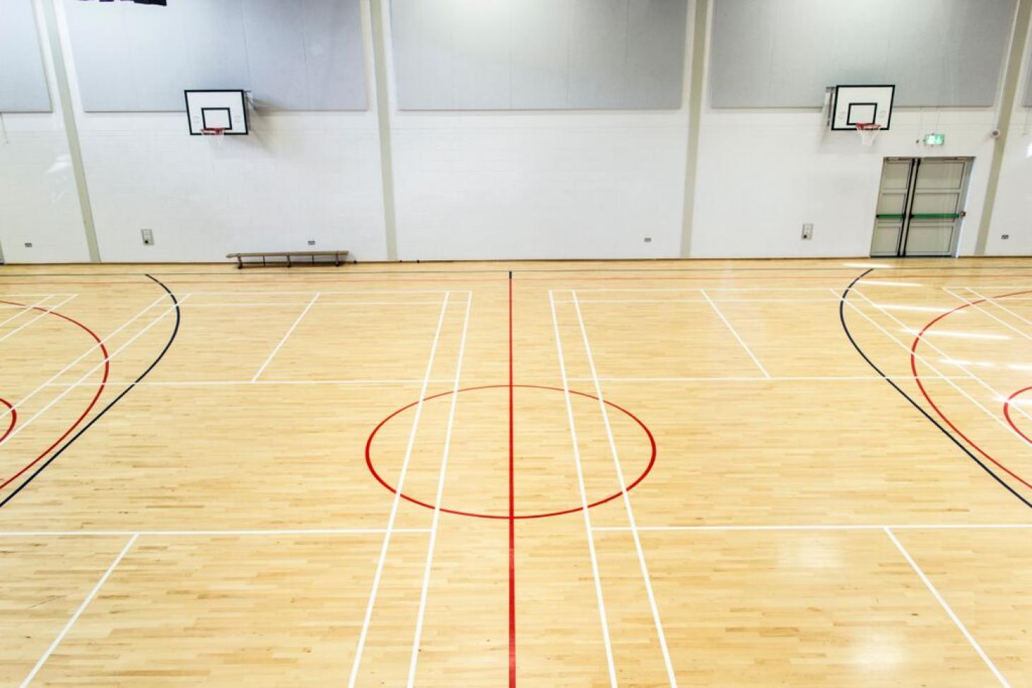 Alexandra College Indoor hockey pitch