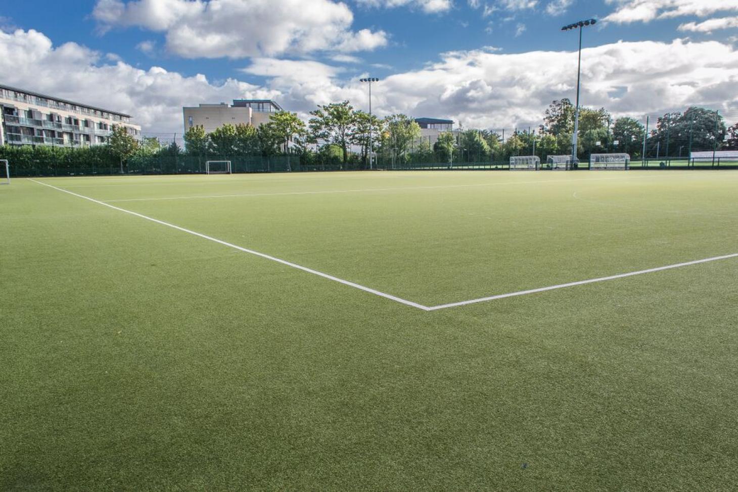 Alexandra College Outdoor   Astroturf hockey pitch