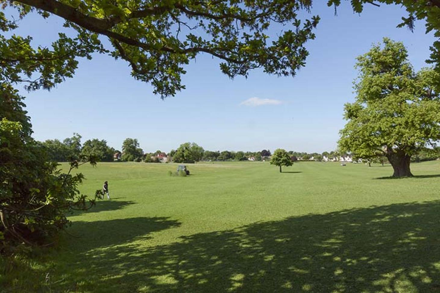 Lloyd Park 11 a side | Grass football pitch