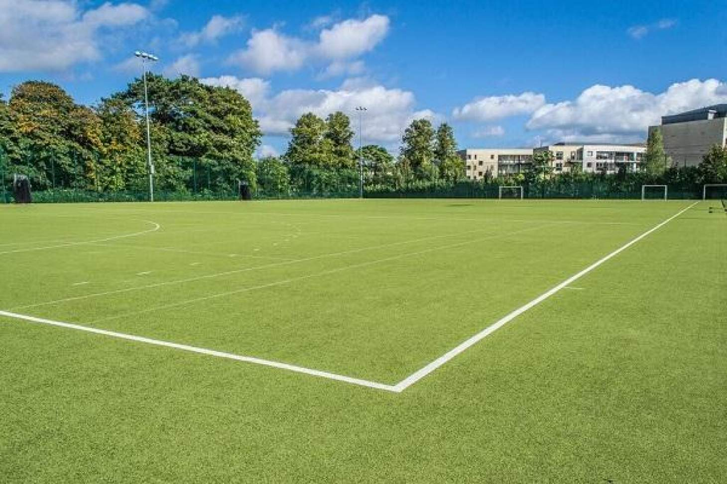 Alexandra College 7 a side | Astroturf football pitch