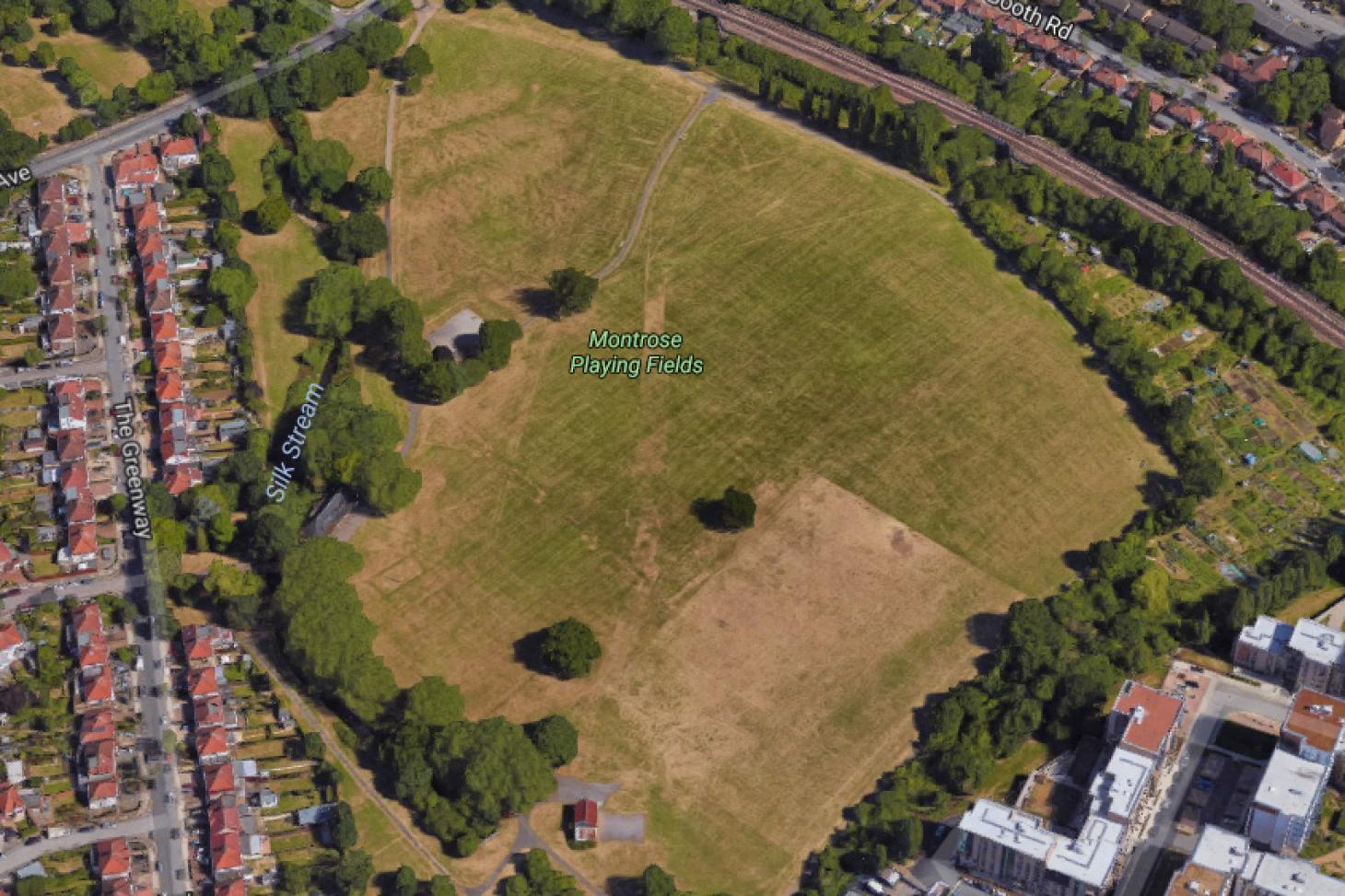 Montrose Park 11 a side | Grass football pitch