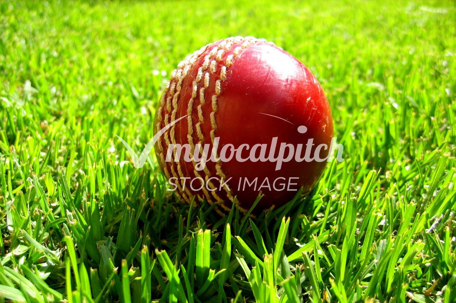 Challney High School for Girls Full size | Grass cricket facilities