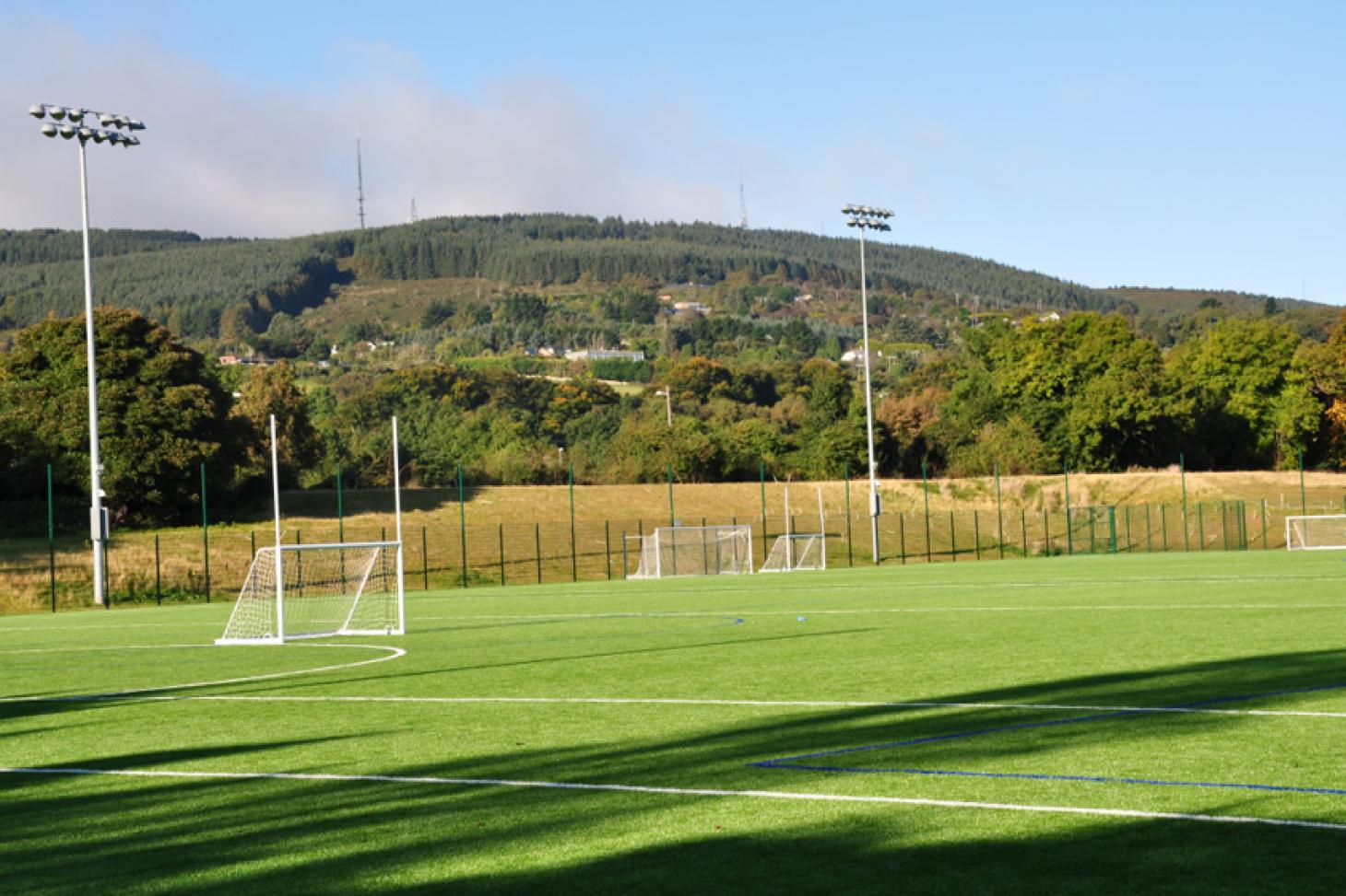 dlr Stepaside Full size | Astroturf gaa pitch