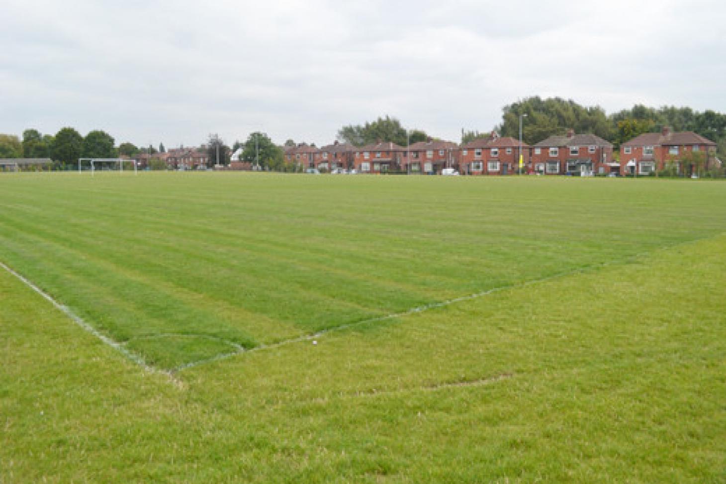 Droylsden Academy 11 a side | Grass football pitch