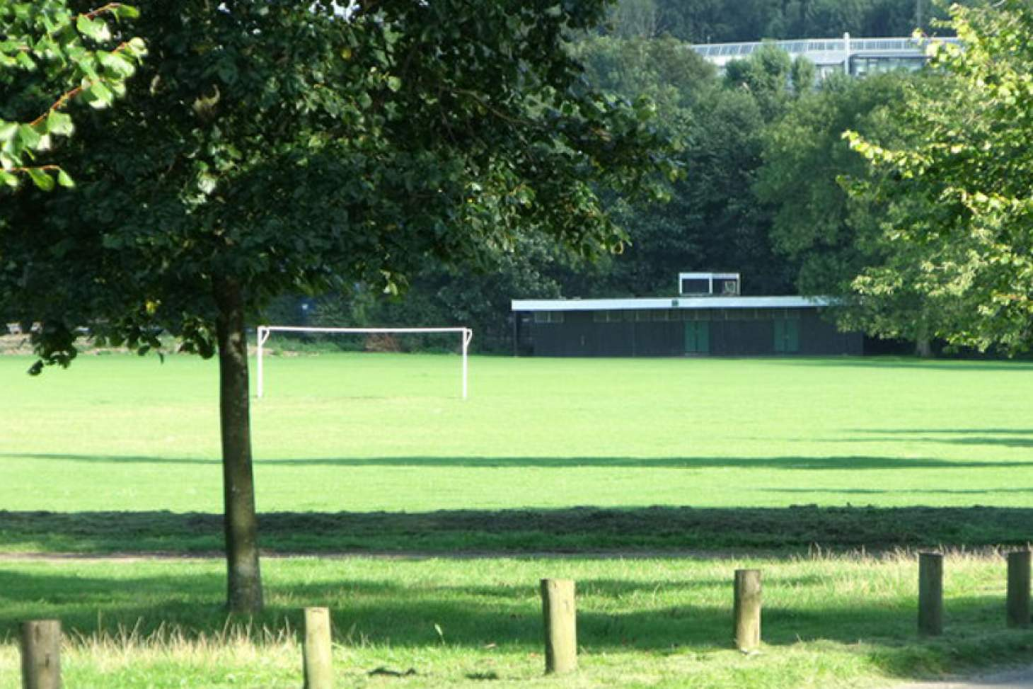 Stanmer Park 11 a side | Grass football pitch