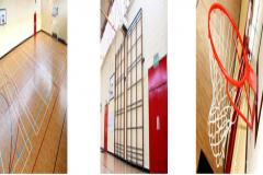 Newpark Sports Centre | Indoor Basketball Court