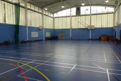 White City Tiger Turf | Indoor Football Pitch