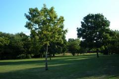 Stonegrove Park