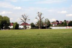 South Norwood Recreation Ground