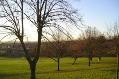 Norwood Grove Recreation Ground