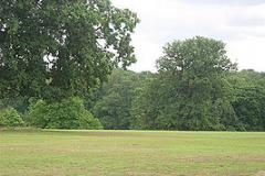 Grovelands Park | Hard (macadam) Tennis Court