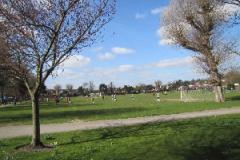 Dundonald Recreation Ground | Grass Cricket Facilities