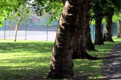 Cottenham Park | Hard (macadam) Tennis Court