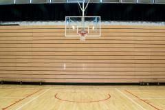 Alexandra College | Indoor Basketball Court