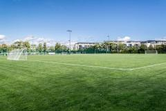 Alexandra College | Grass Football Pitch