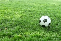 Tymon Park | Grass Football Pitch