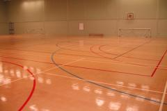 Herschel Sports | Indoor Football Pitch